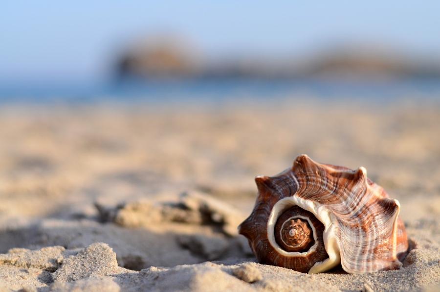 Come riconoscere una buona spiaggia